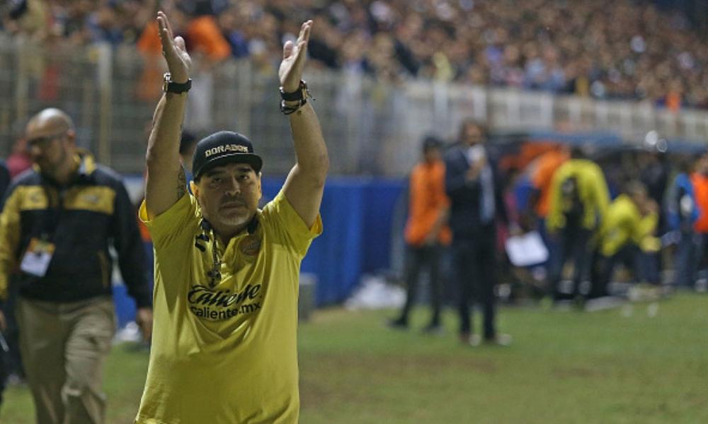 Selección quiere a Maradona